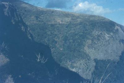 Slide - Te Toto Gorge, Raglan