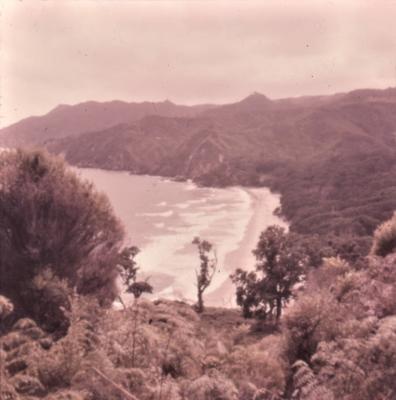 Slide - Orakau Bay, Waihi Beach