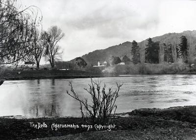 Photograph - The Delta, Ngaruawahia