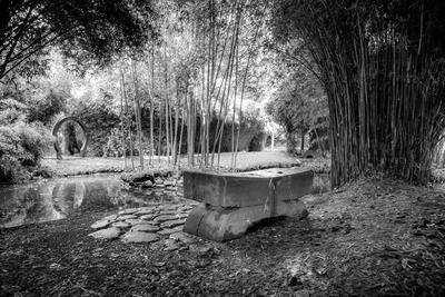 Taitua Arboretum, Hamilton