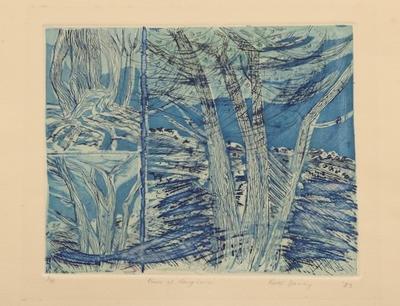 Pines at Rangiuru