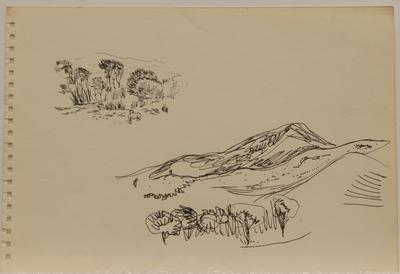 Untitled [landscape III]; Ruth Davey; 2020/18/213
