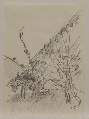 Untitled [landscape VI]