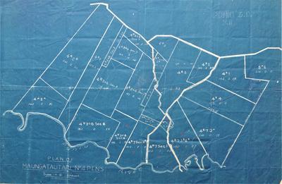 Architectural plans – Auckland Land District, Waipa County, Plan of Maungatautari No 4b Block