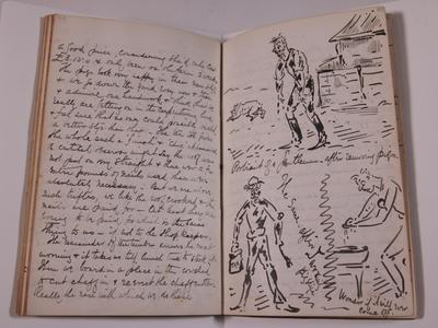 Diary, illustrated. Volume XII.