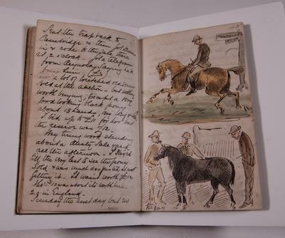 Diary, illustrated. Volume VI.