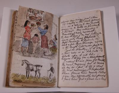 Diary, illustrated. Volume VII