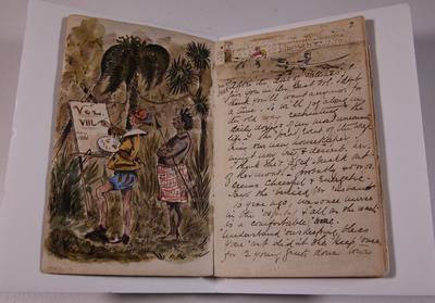 Diary, illustrated. Volume VIII.