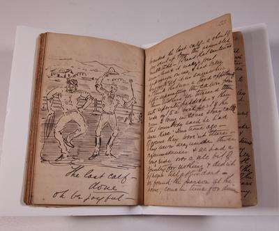 Diary, illustrated. Volume III.