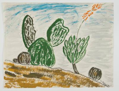 Untitled [Cacti]