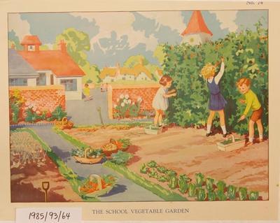 No.74 The School Vegetable Garden