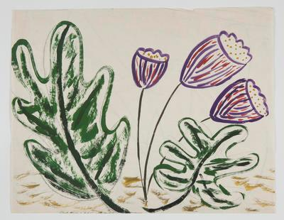 Untitled [Plant Study]; Margot Philips; 1987/41/42