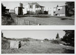 Tawa Street Backyard: Rotowaro - Two Years Apart