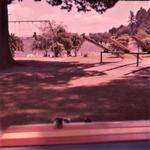 Slide - Hamilton Lake